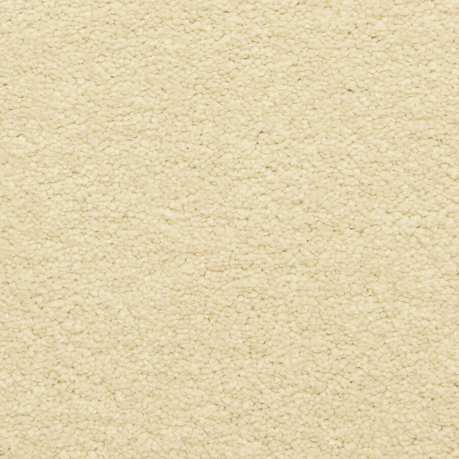 STAINMASTER LiveWell Privy Neutral Zone Carpet Sample