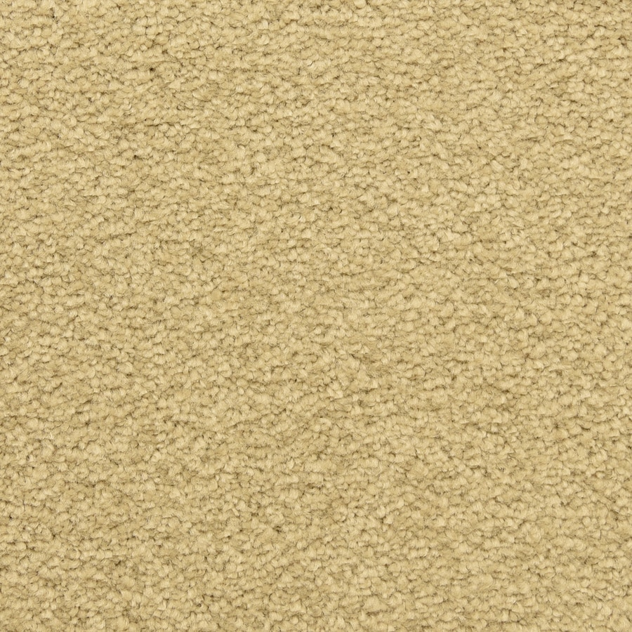 STAINMASTER LiveWell Privy Breezeway Carpet Sample
