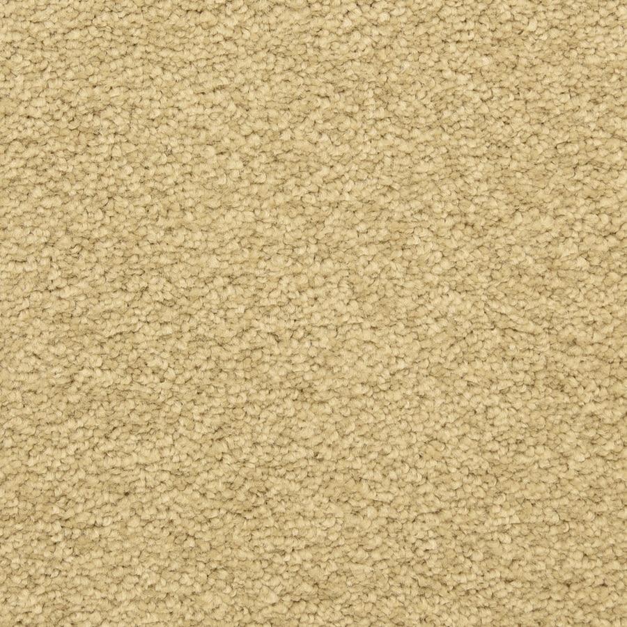 STAINMASTER LiveWell Privy Kashmir Carpet Sample