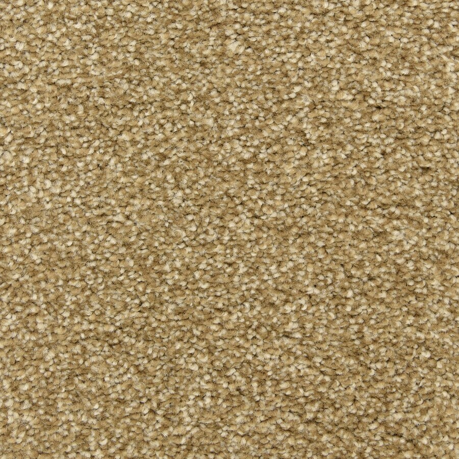 STAINMASTER LiveWell Privy Nutcracker Carpet Sample