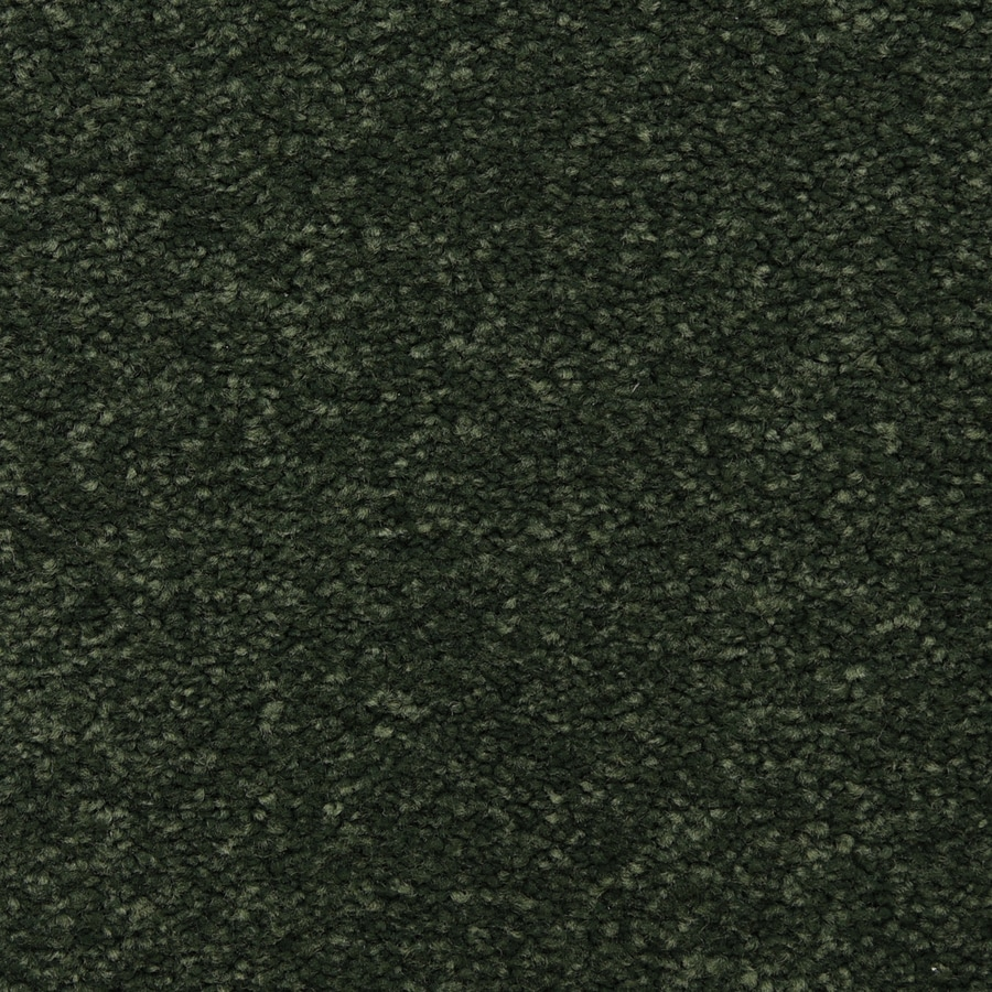 STAINMASTER LiveWell Privy Glowing Ember Carpet Sample