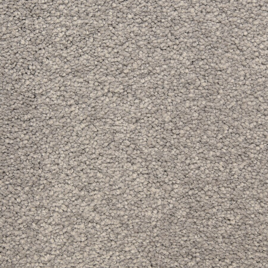 STAINMASTER LiveWell Privy Gateway Carpet Sample