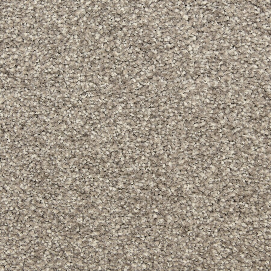 STAINMASTER LiveWell Privy Showstopper Carpet Sample