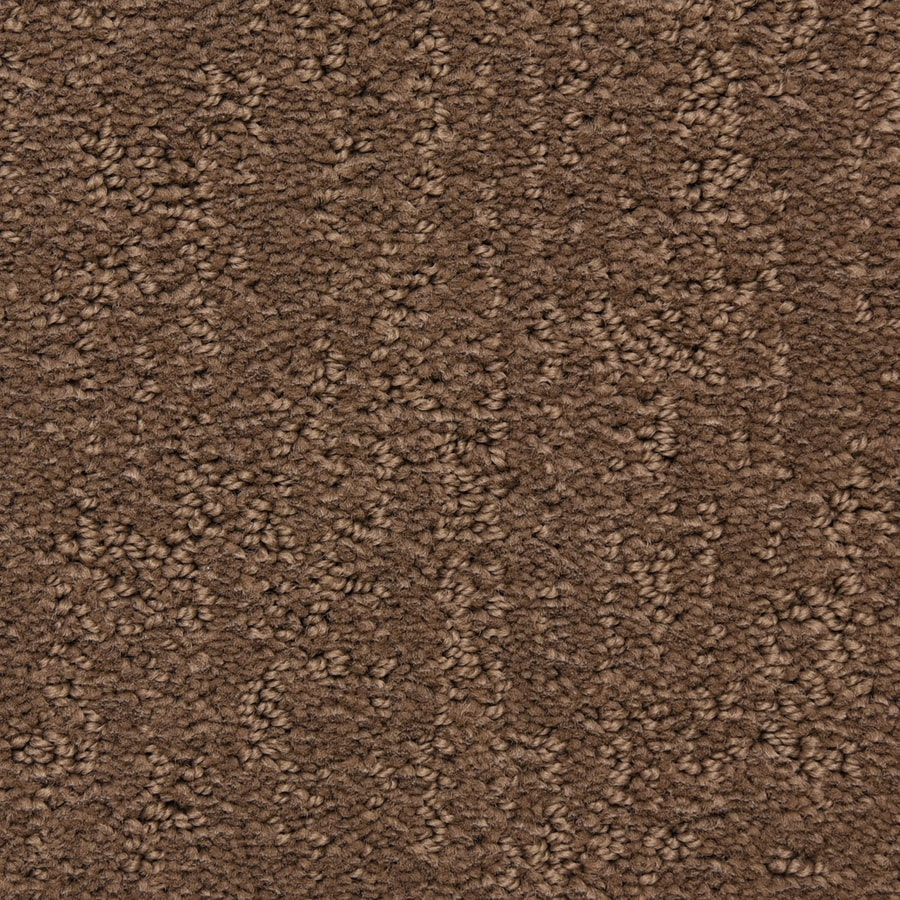 STAINMASTER LiveWell Musical New Champ Carpet Sample