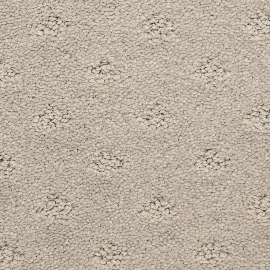 STAINMASTER LiveWell Symphonic Legendary Carpet Sample