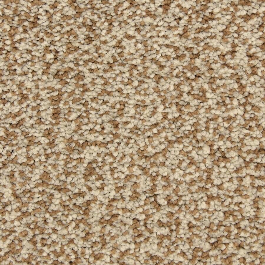 STAINMASTER LiveWell Grandstand Gladden Carpet Sample