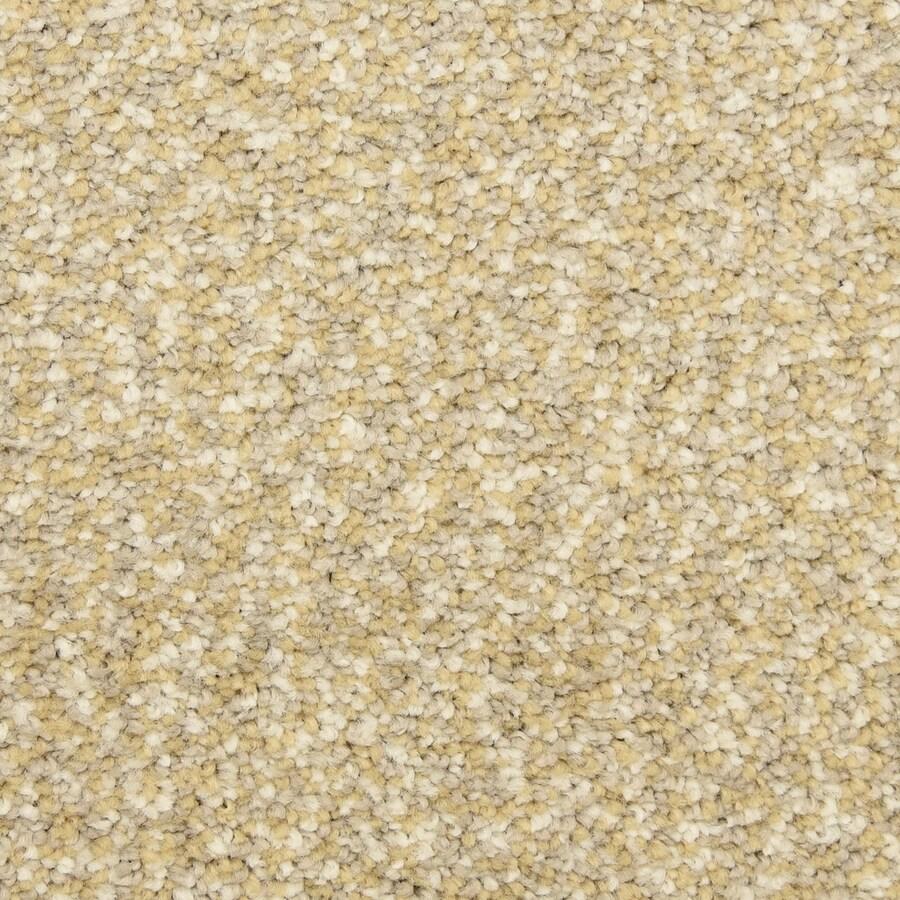 STAINMASTER LiveWell Grandstand Dorchester Carpet Sample