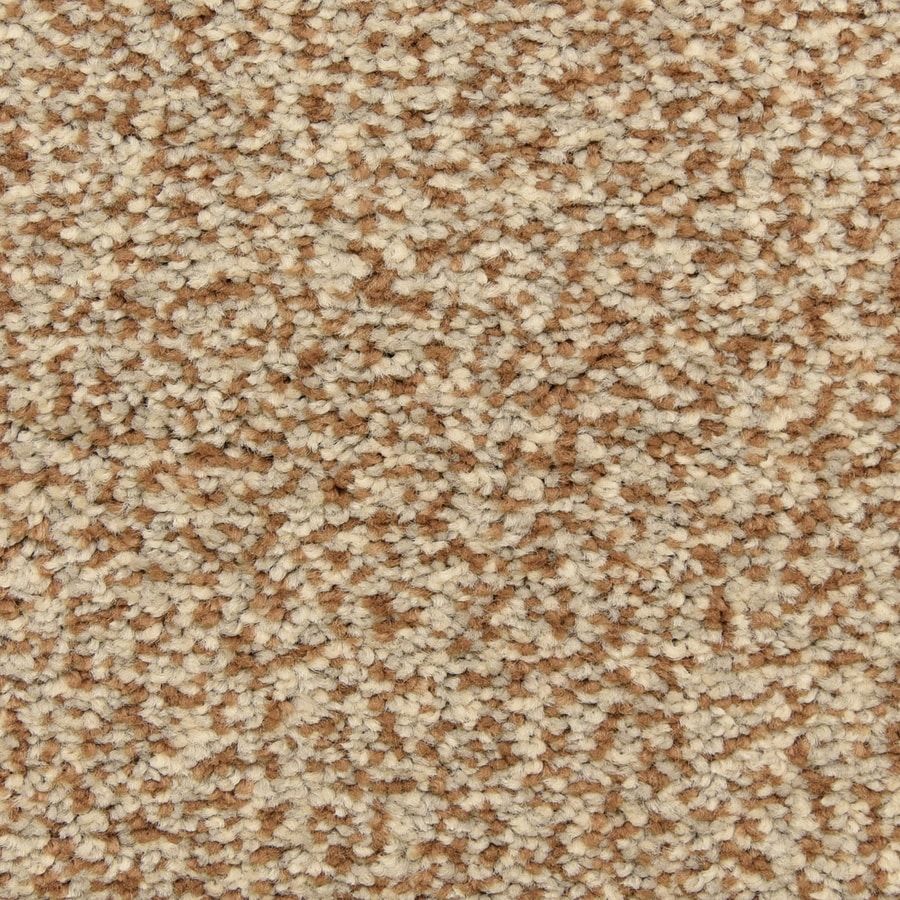 STAINMASTER LiveWell Grandstand Jewel Box Carpet Sample