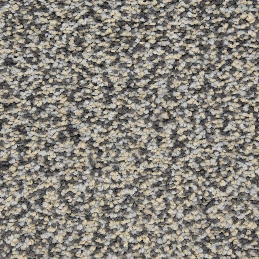 STAINMASTER LiveWell Grandstand Streamline Carpet Sample