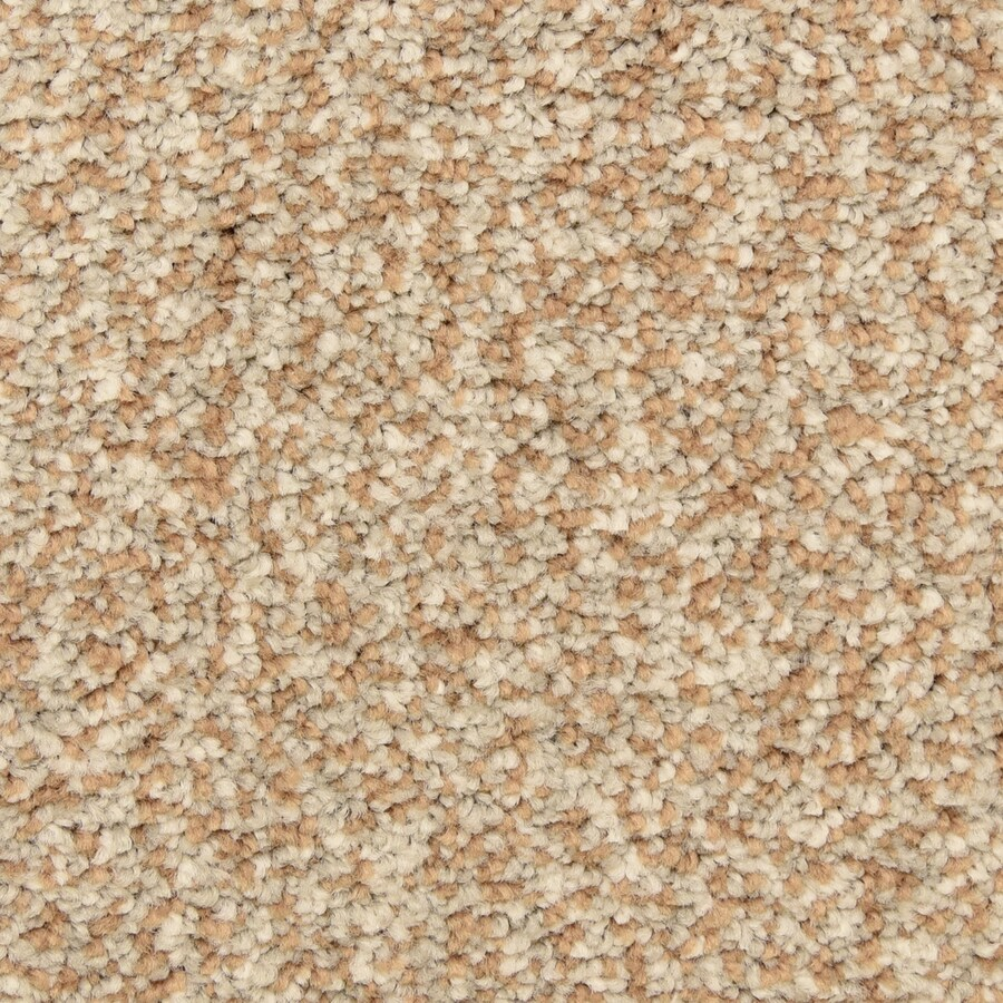 STAINMASTER LiveWell Festivity Autumn Maize Carpet Sample