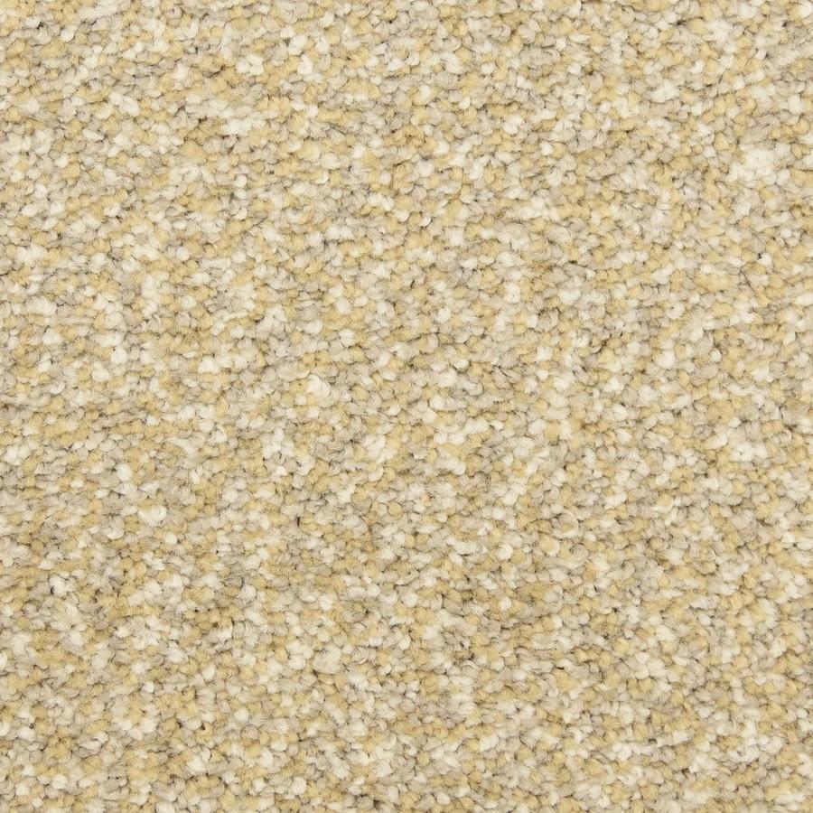 STAINMASTER LiveWell Festivity Dorchester Carpet Sample