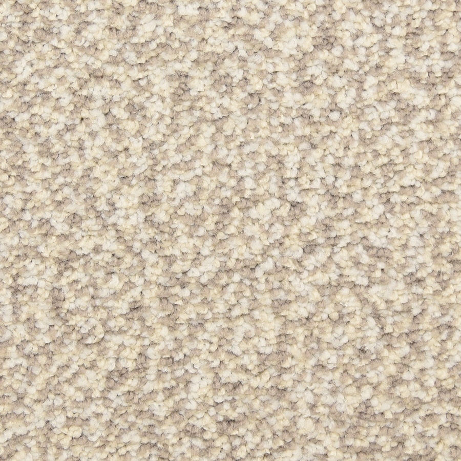 STAINMASTER LiveWell Festivity Field House Carpet Sample