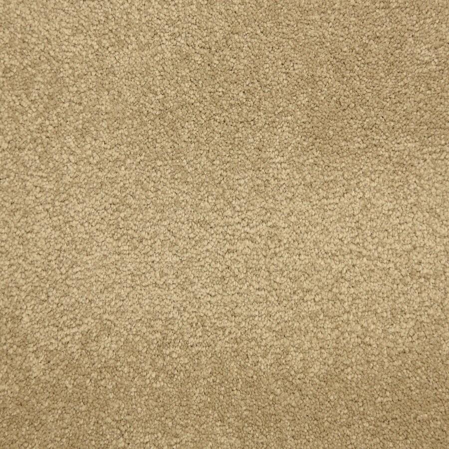 STAINMASTER LiveWell Hush-Hush Hansel Carpet Sample