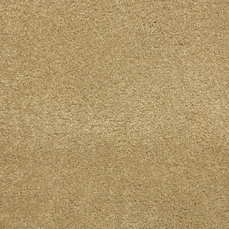 STAINMASTER LiveWell Hush-Hush Rapunzel Carpet Sample