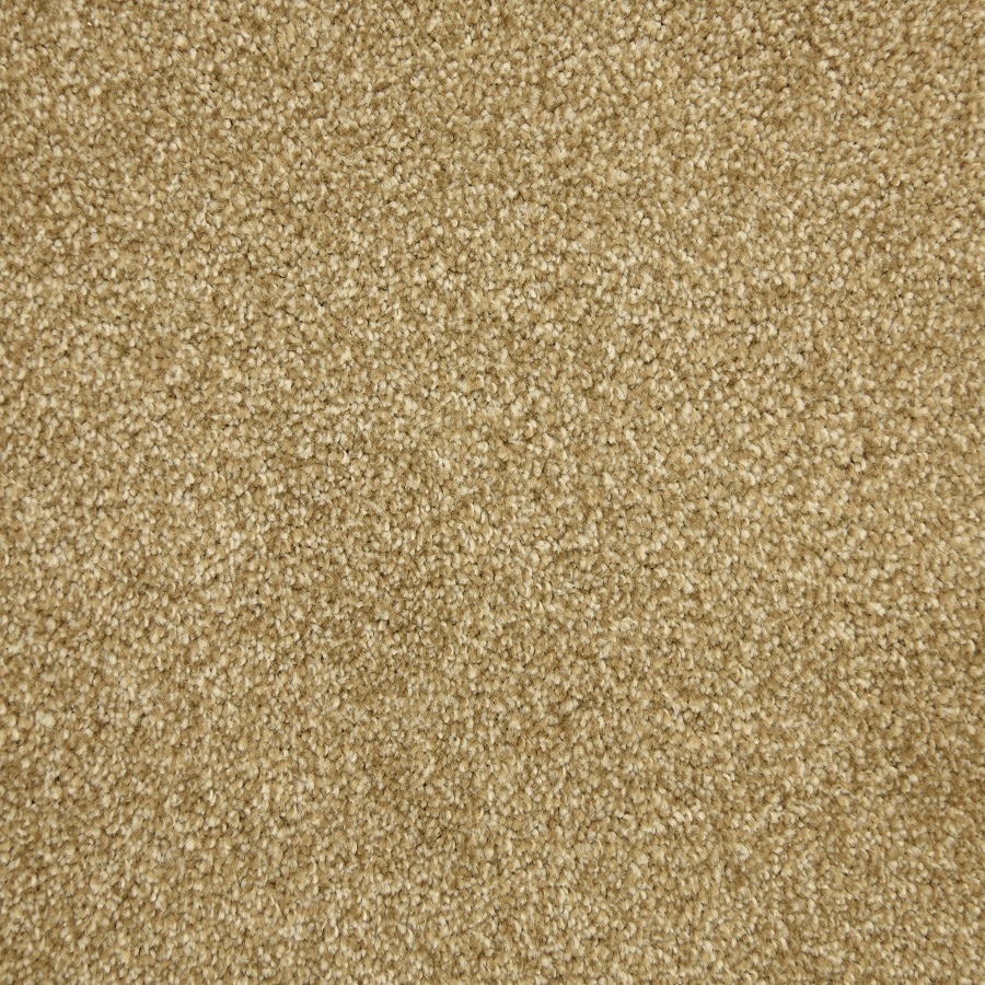STAINMASTER LiveWell Hush-Hush Alice Carpet Sample