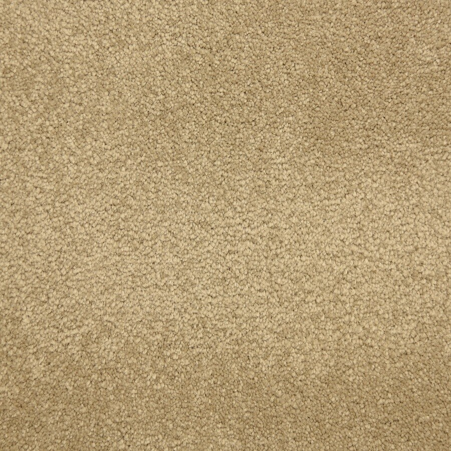 Stainmaster Livewell Fairy Tale Hansel Carpet Sample At