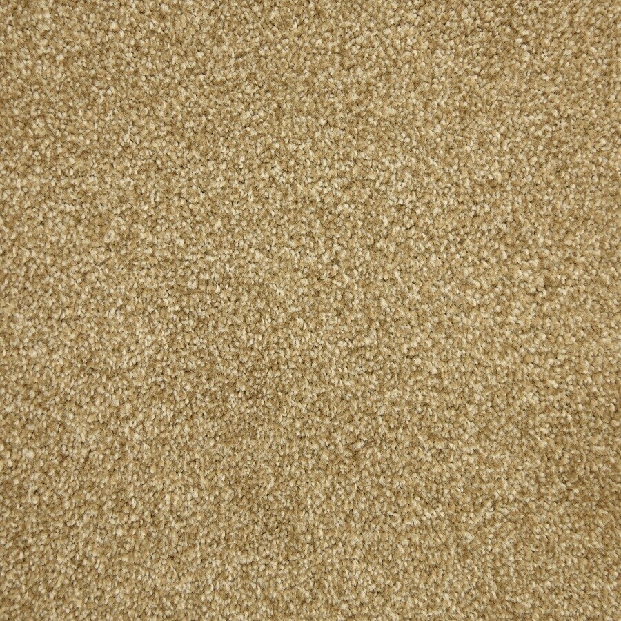 STAINMASTER LiveWell Fairy-Tale Alice Carpet Sample