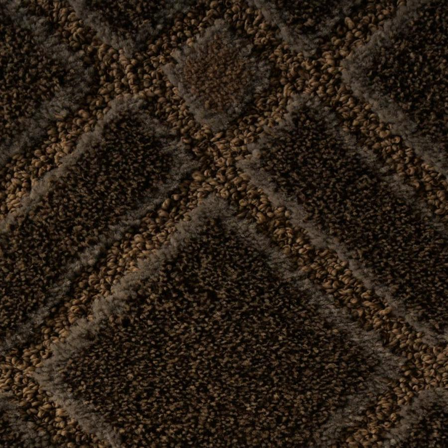 STAINMASTER Active Family Plentitude Dark Clove Carpet Sample