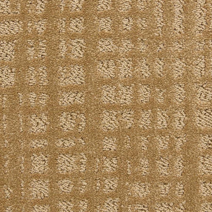 STAINMASTER PetProtect Vintage Hall Cedar Carpet Sample At