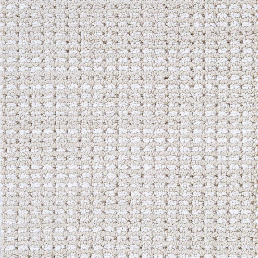 Asheville Model Home Interior Design 1264f: STAINMASTER LiveWell Asheville Cougar Carpet Sample At