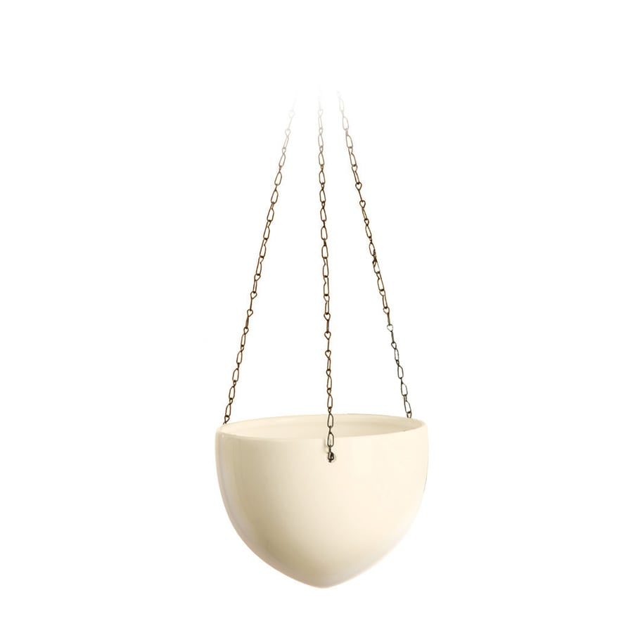 8.7-in x 8.2-in Cream Ceramic Hanging English Planter