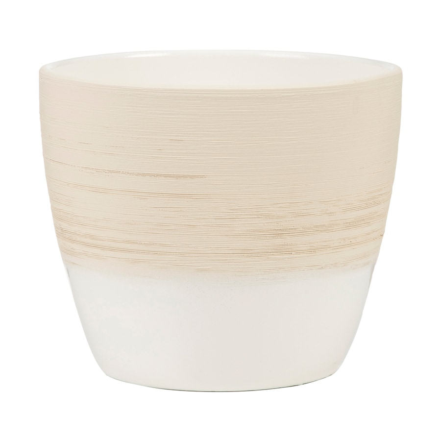 6.3-in x 5.8-in Vanilla Cream Ceramic English Planter