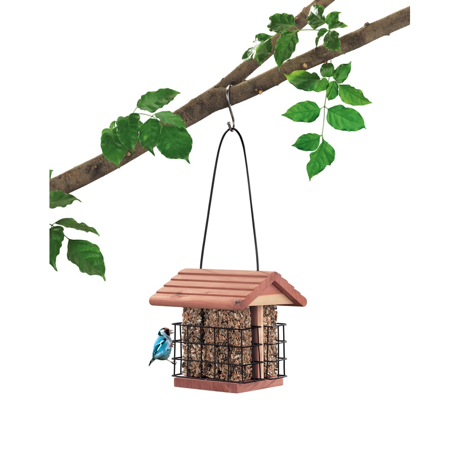 Garden Treasures Wood Suet Bird Feeder