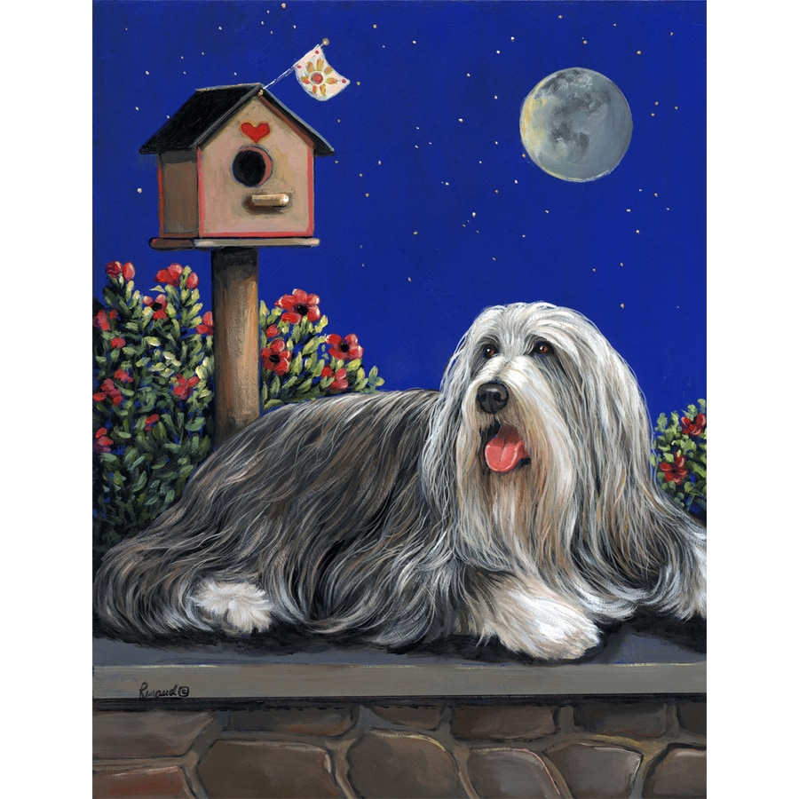 Precious Pet Paintings 1.5-ft x 1.04-ft Bearded Collie Spring Flag