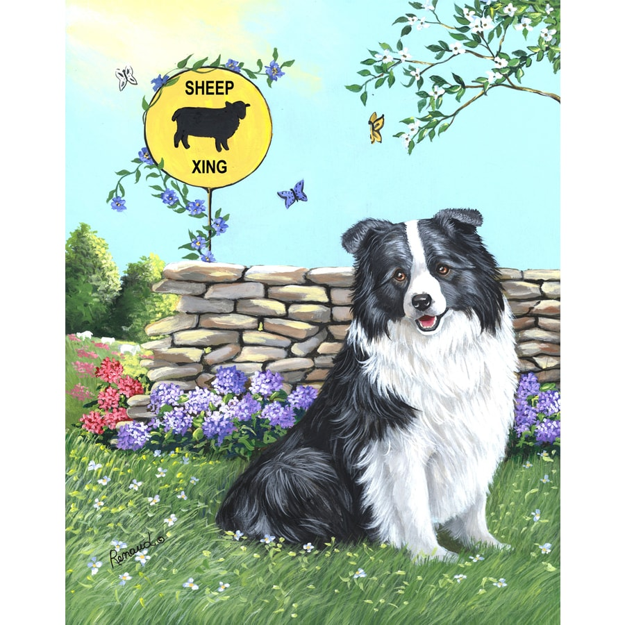 Precious Pet Paintings 1.5-ft x 1.04-ft Border Collie Spring Flag