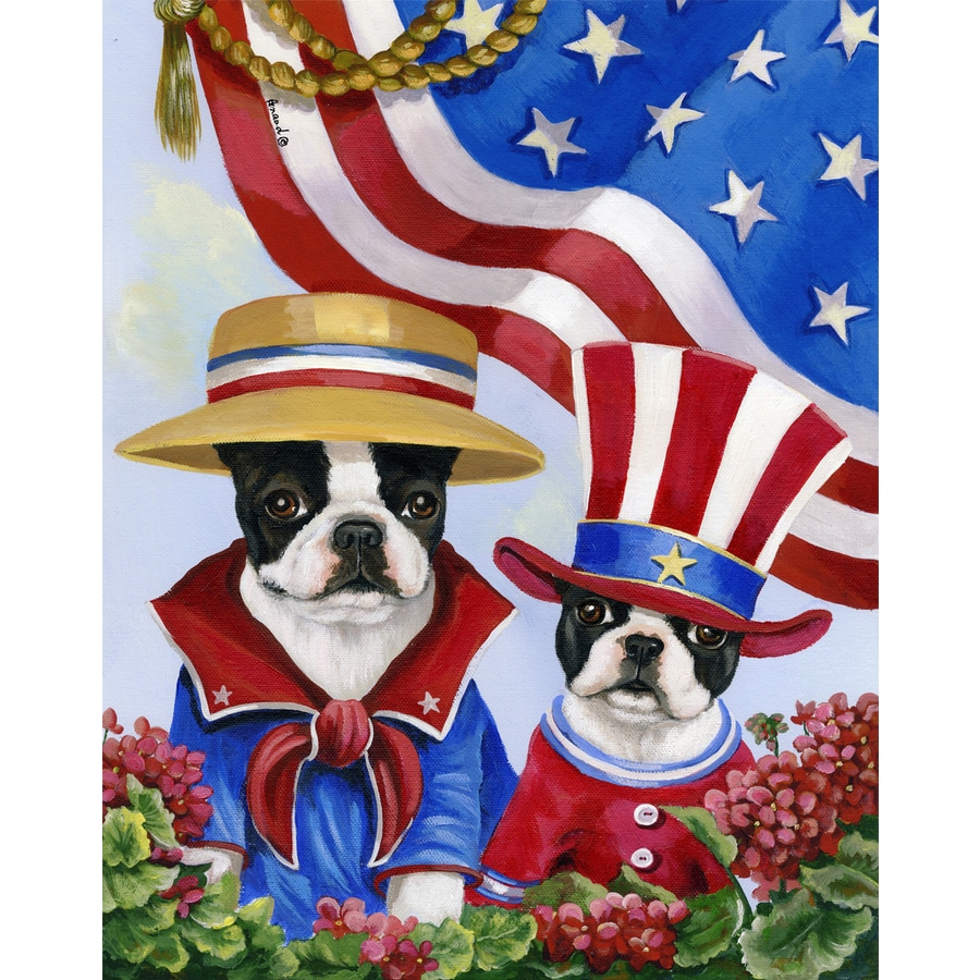 Precious Pet Paintings 1.5-ft x 1.04-ft Boston Terrier 4th of July Flag
