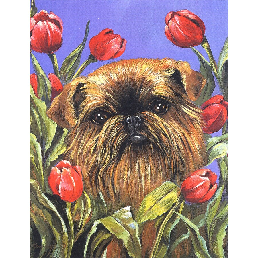 Precious Pet Paintings 1.5-ft x 1.04-ft Brussels Griffon Spring Flag