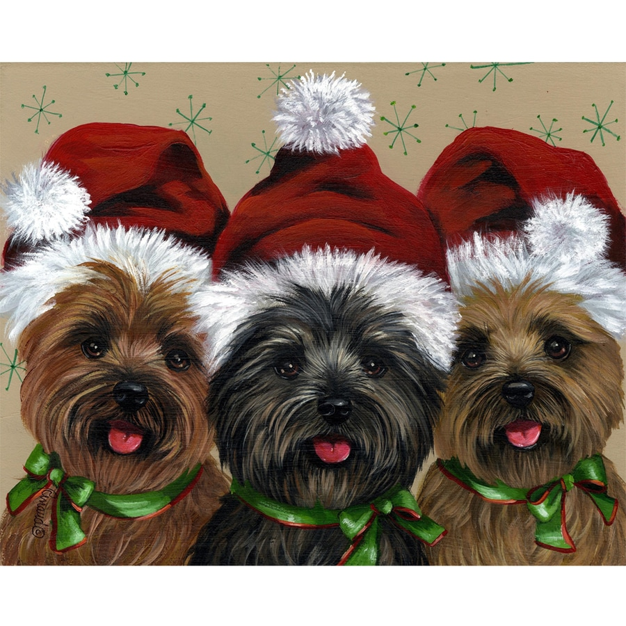 Precious Pet Paintings 1.5-ft x 1.04-ft Cairn Terrier Christmas Flag
