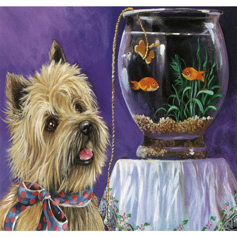 Precious Pet Paintings 1.5-ft x 1.04-ft Cairn Terrier  Flag