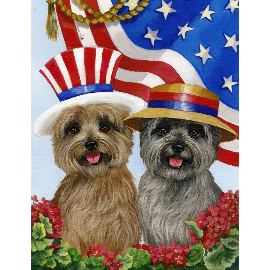 Precious Pet Paintings 1.5-ft x 1.04-ft Cairn Terrier 4th of July Flag