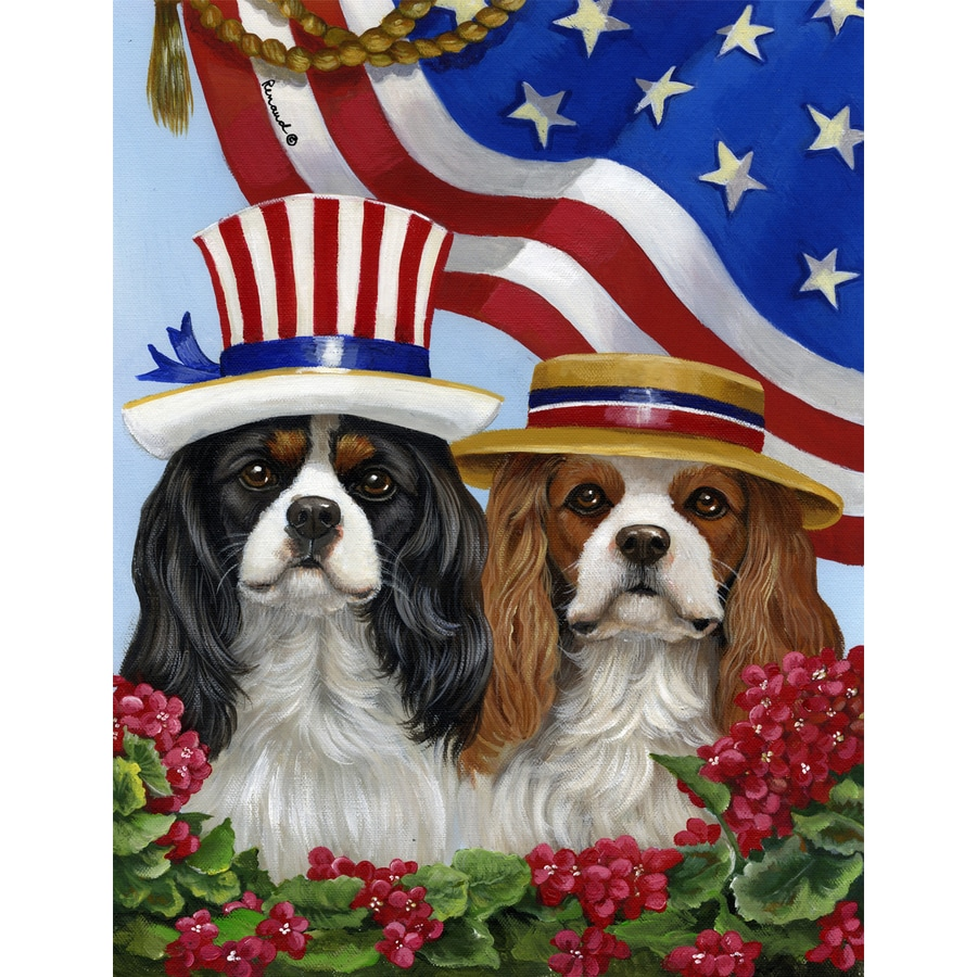 Precious Pet Paintings 1.5-ft x 1.04-ft Cavalier King Charles Spaniel 4th of July Flag