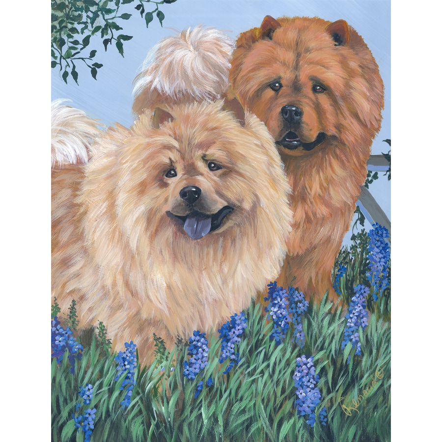 Precious Pet Paintings 1.5-ft x 1.04-ft Chow Chow Spring Flag