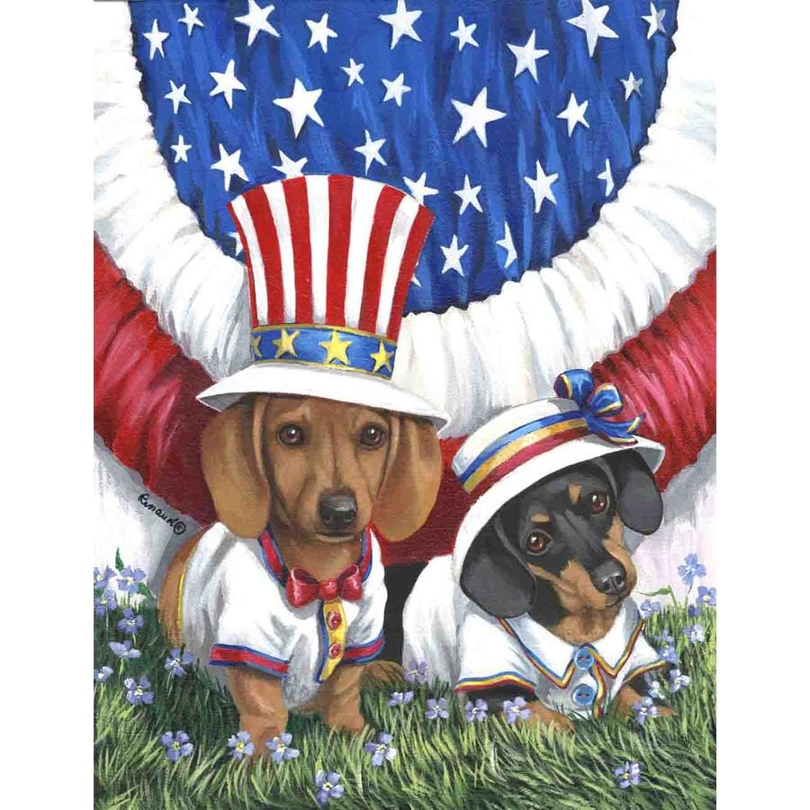 Precious Pet Paintings 1.5-ft x 1.04-ft Dachshund 4th of July Flag