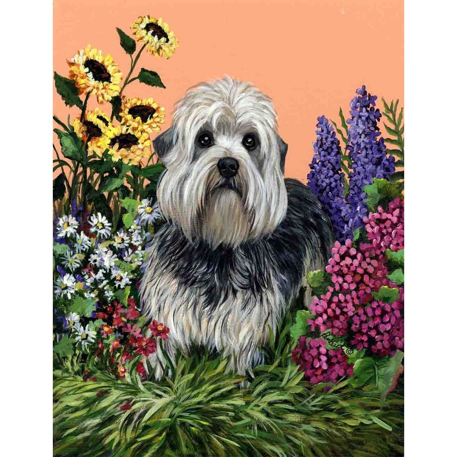 Precious Pet Paintings 1.5-ft x 1.04-ft Dandie Dinmont Terrier Spring Flag