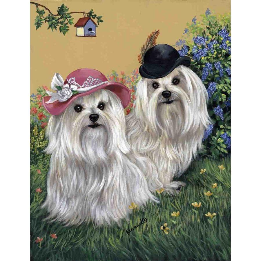 Precious Pet Paintings 1.5-ft x 1.04-ft Maltese Spring Flag