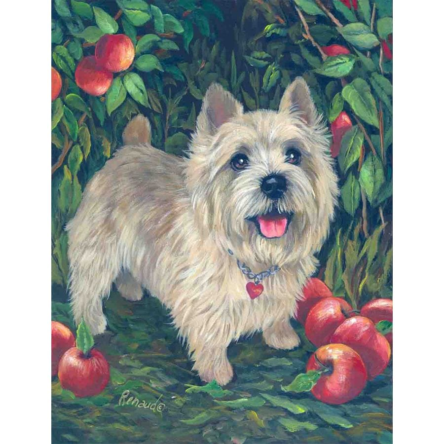 Precious Pet Paintings 1.5-ft x 1.04-ft Norwich Terrier Spring Flag
