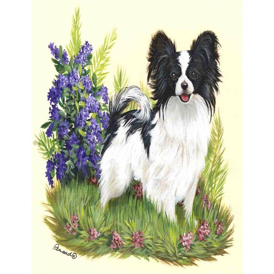 Precious Pet Paintings 1.5-ft x 1.04-ft Papillon Spring Flag
