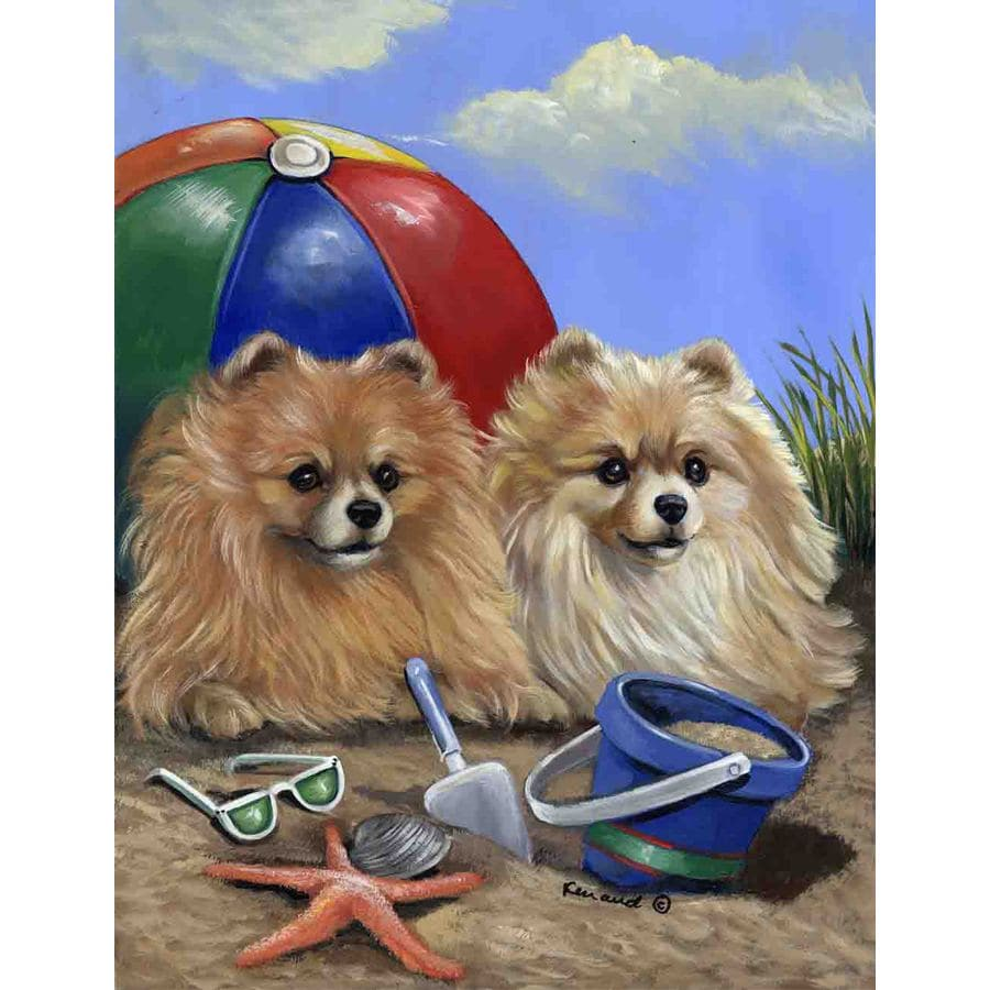 Precious Pet Paintings 1.5-ft x 1.04-ft Pomeranian Beach Flag
