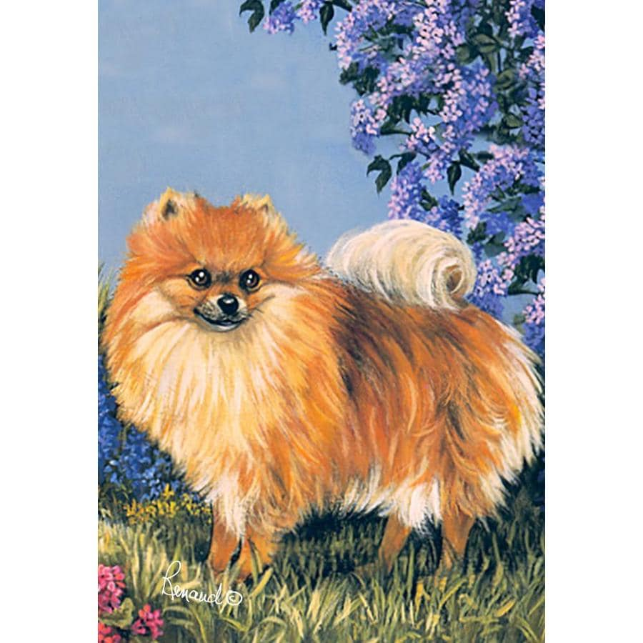 Precious Pet Paintings 1.5-ft x 1.04-ft Pomeranian Spring Flag