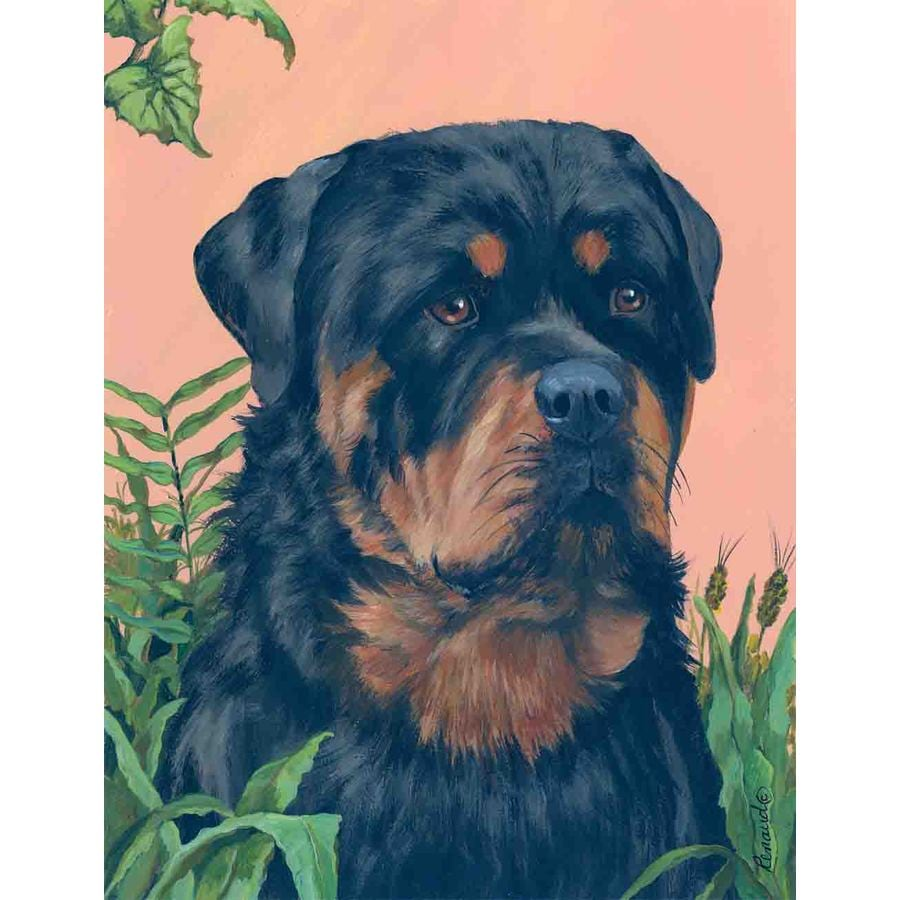Precious Pet Paintings 1.5-ft x 1.04-ft Rottweiler Spring Flag
