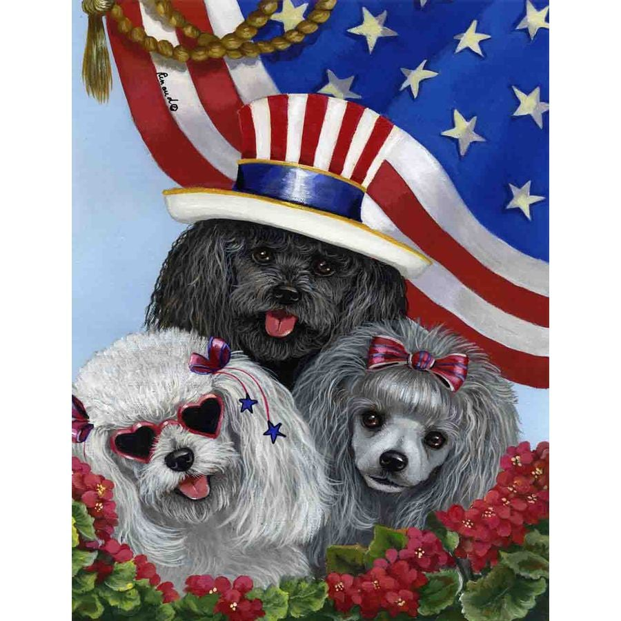Precious Pet Paintings 3.33-ft x 2.33-ft Poodle 4th of July Flag