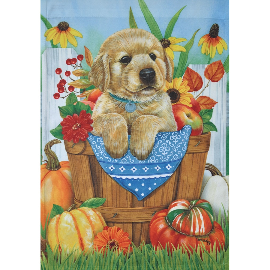 Rain or Shine 2.33-ft W x 3.33-ft H Dogs House Flag