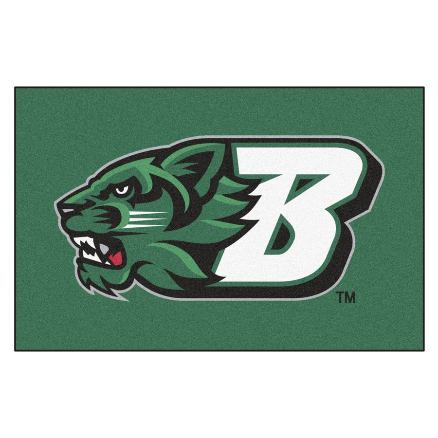 FANMATS Binghamton University Rectangular Indoor Machine-Made Sports Throw Rug (Common: 1-1/2 x 2-1/2; Actual: 1.583-ft W x 2.5-ft L x dia)