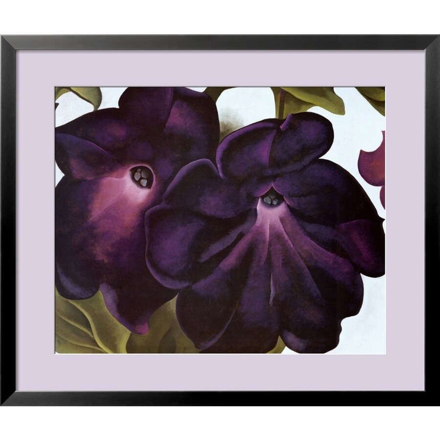 art.com 34-in W x 29-in H Framed Floral and Botanical Wall Art