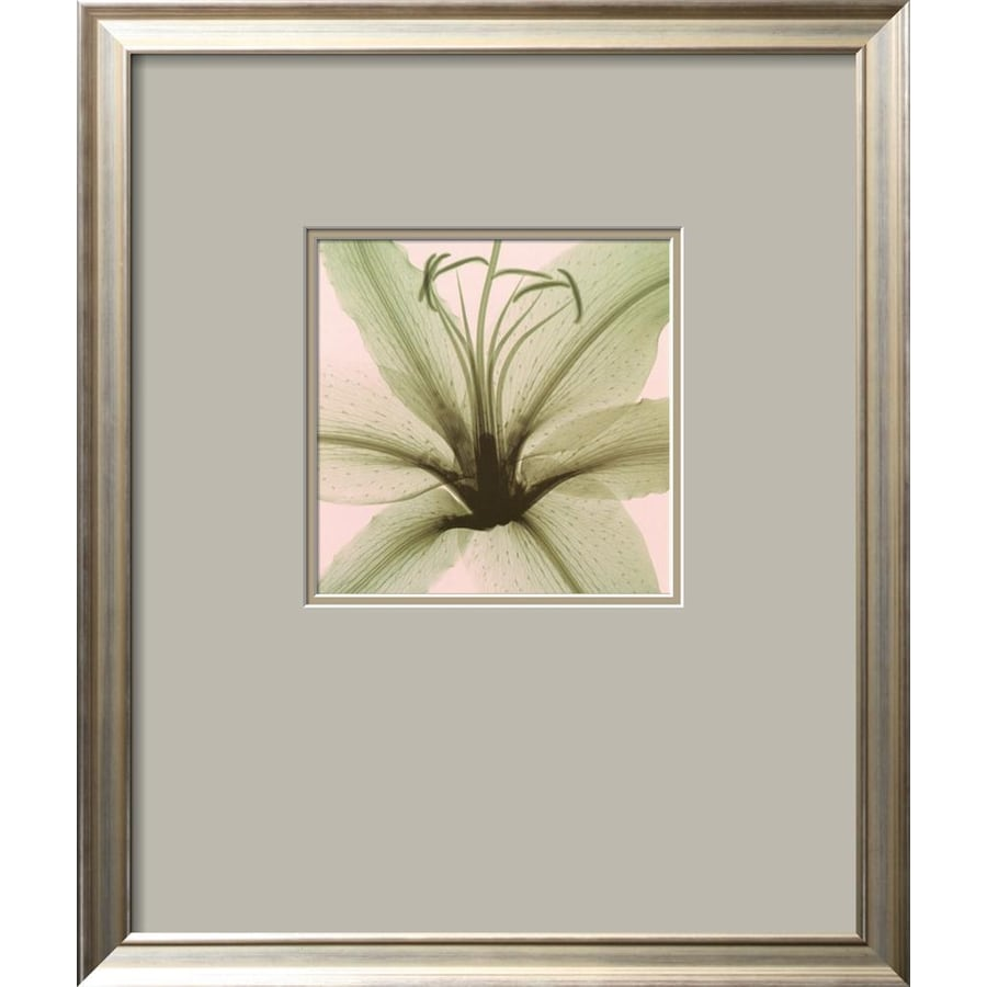 Shop artcom 19 in w x 23 in h framed floral and botanical for Kitchen cabinets lowes with wall art flower