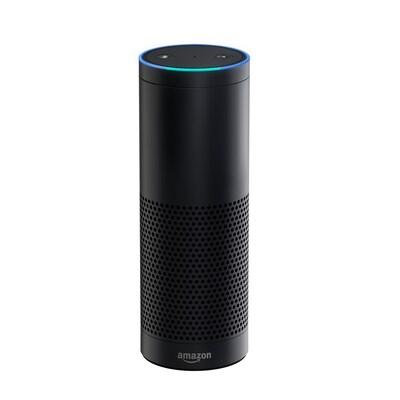 Amazon Echo At Lowes Com